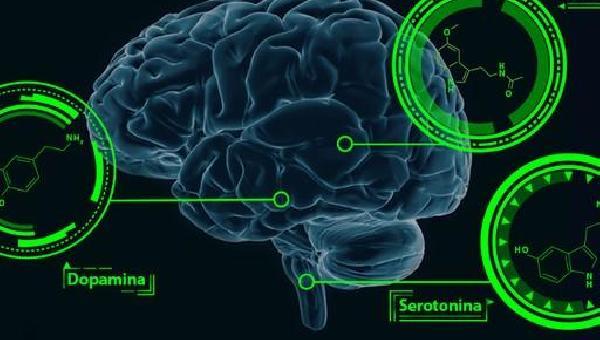 O Sistema de Recompensa Cerebral e Suas Finanças: UM CHAMADO À REFLEXÃO